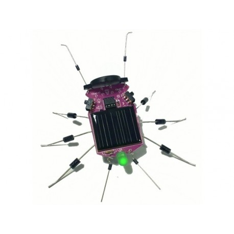 INSECTE A ENERGIE SOLAIRE